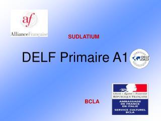 DELF Primaire A1