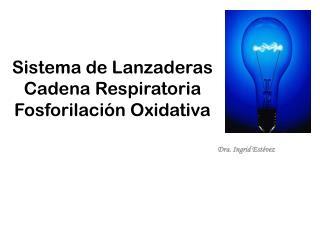 Sistema de Lanzaderas Cadena Respiratoria Fosforilación Oxidativa