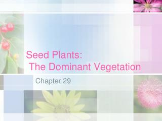 Seed Plants:  The Dominant Vegetation