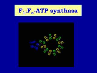 F 1 .F o -ATP synthasa