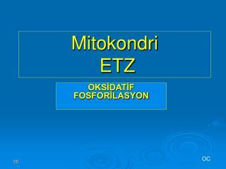 Mitokondri  ETZ