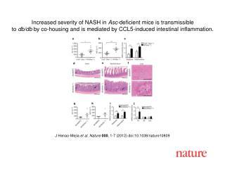 J Henao-Mejia  et al .  Nature 000 ,  1 - 7  (2012) doi:10.1038/nature10809