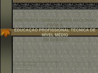 DIRETRIZES CURRICULARES NACIONAIS PARA A EDUCAÇÃO PROFISSIONAL TÉCNICA DE NÍVEL MÉDIO  EM DEBATE