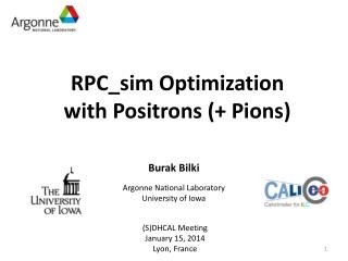 RPC_sim  Optimization w ith Positrons (+ Pions)