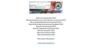 Becas de Capacitación 2013 Beca de Excelencia en la Contribución a tu Entorno 2013