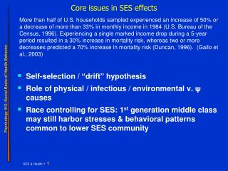 Core issues in SES effects