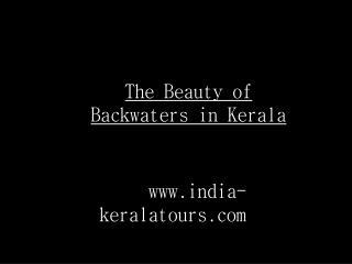 Beauty of Kerala Backwaters