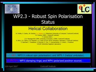 WP2.3 - Robust Spin Polarisation Status