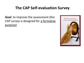 The CAP Self-evaluation Survey