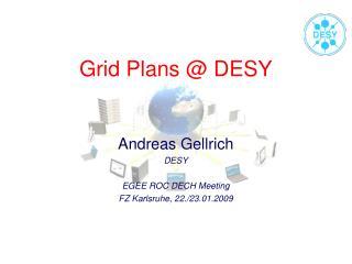 Grid Plans @ DESY