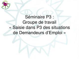 Séminaire P3 : Groupe de travail  «Saisie dans P3 des situations de Demandeurs d'Emploi»
