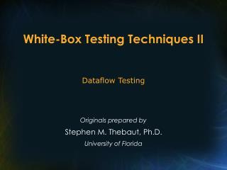 White-Box Testing Techniques II