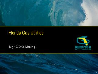Florida Gas Utilities July 12, 2006 Meeting