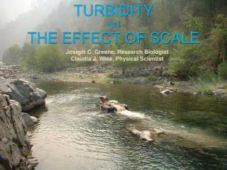 TURBIDITY and THE EFFECT OF SCALE