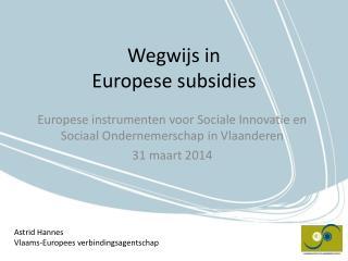 Wegwijs in  Europese subsidies