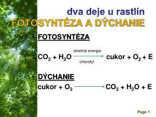dva deje u rastlín  FOTOSYNTÉZA A DÝCHANIE