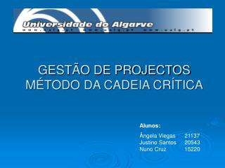 GESTÃO DE PROJECTOS MÉTODO DA CADEIA CRÍTICA