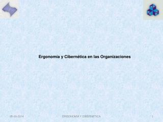 Ergonomía y Cibernética en las Organizaciones