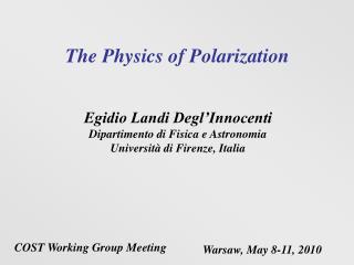 The Physics of Polarization