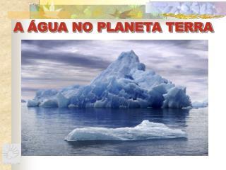 A �GUA NO PLANETA TERRA