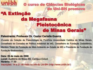 """""""A Extinção               da  Megafauna                        Pleistocênica"""