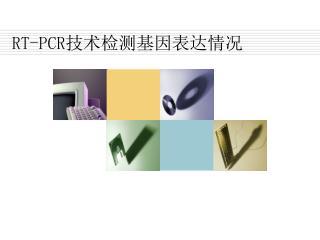 RT-PCR 技术检测基因表达情况