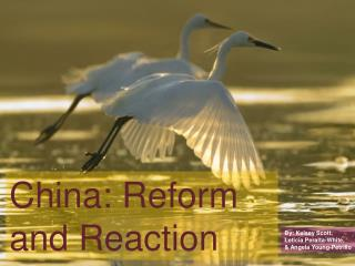 China: Reform and Reaction