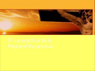 III. La práctica de la  Pastoral Vocacional
