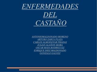 ENFERMEDADES DEL  CASTAÑO ANTONIOMALDONADO MORENO ARTURO ZARCA PLAZA CARLOS ALMODOVAR PRADAS