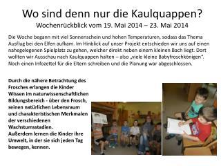 Wo sind denn nur die Kaulquappen? Wochenrückblick vom 19. Mai 2014 – 23. Mai 2014