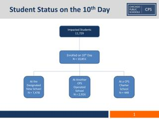 Student Status on the 10 th  Day