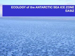 ECOLOGY of the ANTARCTIC SEA ICE ZONE EASIZ