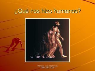 ¿Qué nos hizo humanos?
