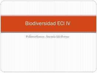 Biodiversidad  ECI IV