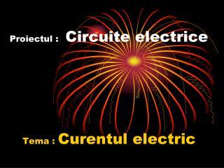 Proiectul : Circuite electrice