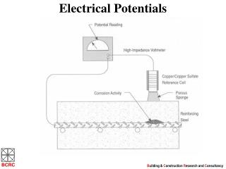Electrical Potentials