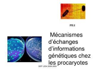 Mécanismes  d'échanges  d'informations  génétiques chez  les procaryotes