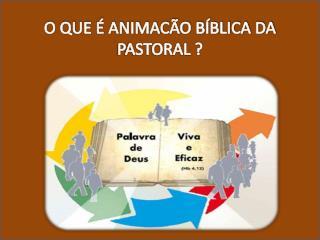 O QUE É ANIMACÃO BÍBLICA DA PASTORAL ?