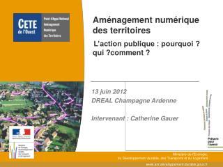 Aménagement numérique des territoires L'action publique : pourquoi ? qui ?comment ?