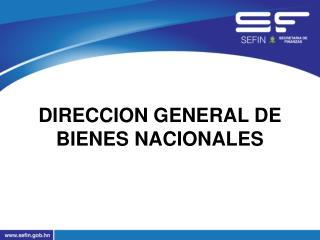 DIRECCION GENERAL DE BIENES NACIONALES