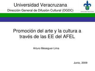 Promoción del arte y la cultura a través de las EE del AFEL