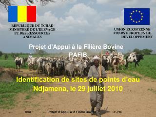Projet d'Appui à la Filière Bovine PAFIB Identification de sites de points d'eau