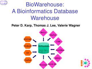 BioWarehouse:  A Bioinformatics Database Warehouse