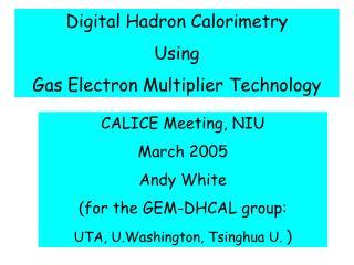 Digital Hadron Calorimetry Using Gas Electron Multiplier Technology