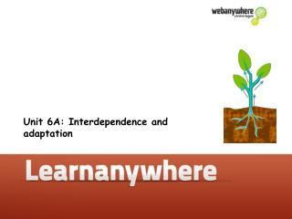 Unit 6A: Interdependence and adaptation