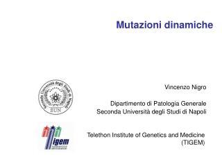 Mutazioni dinamiche