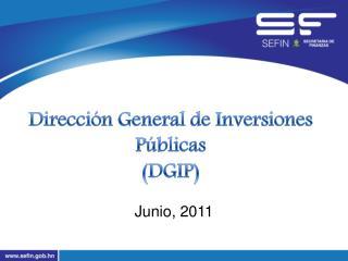 Direcci�n General de Inversiones P�blicas (DGIP)