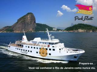A empresa EBX   uma holding 100 brasileira, que desenvolve e administra neg cios nos setores de minera  o, log stica, pe