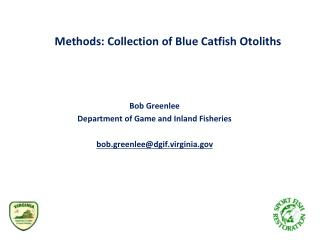 Methods: Collection of Blue Catfish  Otoliths