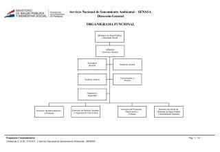 s ervicio  Nacional de Saneamiento  Ambiental – SENASA  Dirección General ORGANIGRAMA FUNCIONAL